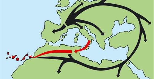 mapa con rutas de colonización de las islas canarias