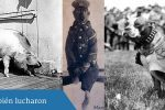 Foto portada entrada Animales al frente, sobre animales en la primera guerra mundial
