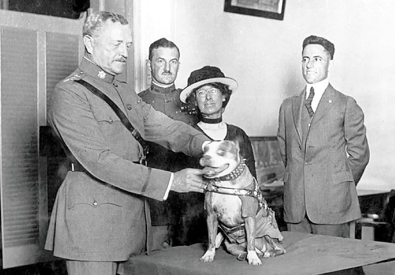 Una foto de Stubby con el militar estadounidense J.J. Pershing