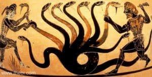 hidra hércules