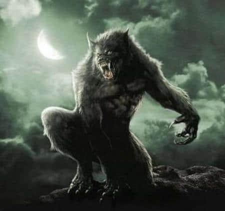 Hombre lobo licántropos