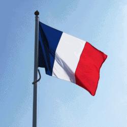 Tricolor francesa