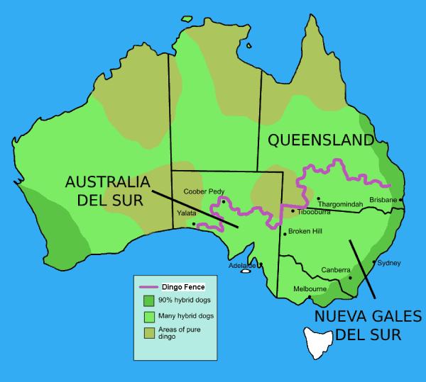Mapa valla del Dingo Australia