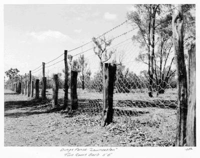 Imagen valla del dingo Queensland